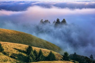 https://imgc.artprintimages.com/img/print/magical-land-of-fog-and-light-mount-tamalpais-state-park-california_u-l-pwc1bb0.jpg?p=0