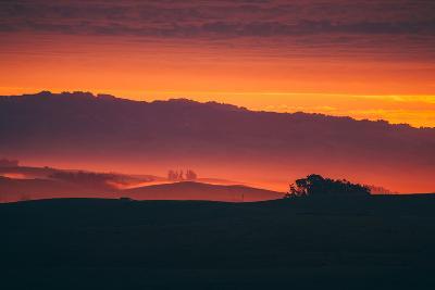Magical Sun Layers, Petaluma, California--Photographic Print