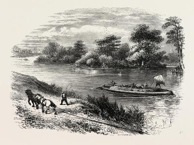 Magna Charta Island, in the River Thames, England, UK--Giclee Print