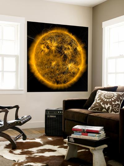 Magnetic Field Lines on the Sun-Stocktrek Images-Wall Mural