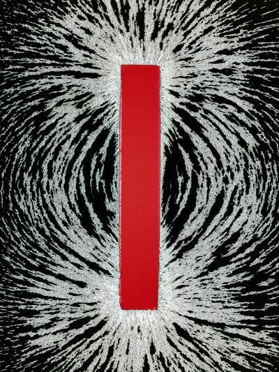 Magnetic Field-Cordelia Molloy-Photographic Print