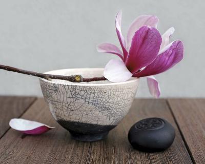 Magnolia and Bowl-Amelie Vuillon-Art Print