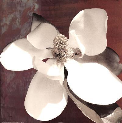 Magnolia Blue I-Katrina Craven-Art Print