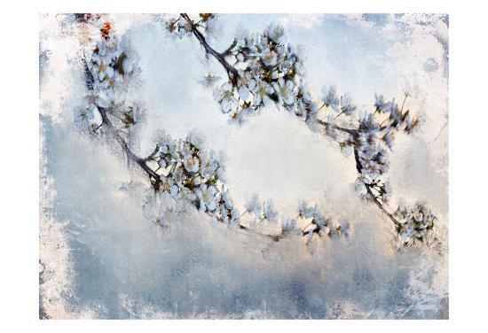 Magnolia Branch-Kimberly Allen-Art Print