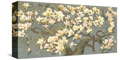 Magnolia Branches--Stretched Canvas Print