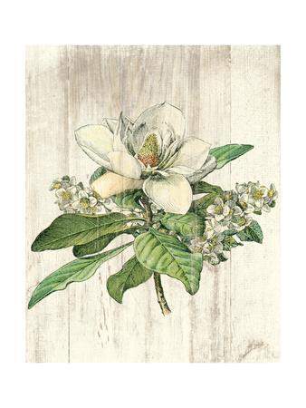 https://imgc.artprintimages.com/img/print/magnolia-de-printemps-no-words_u-l-q1b3mxc0.jpg?p=0