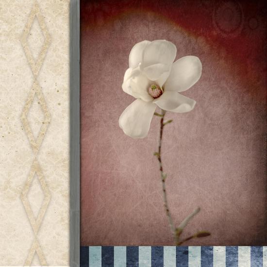 Magnolia Diamond 1-LightBoxJournal-Giclee Print