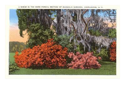 Magnolia Gardens, Charleston, South Carolina--Art Print
