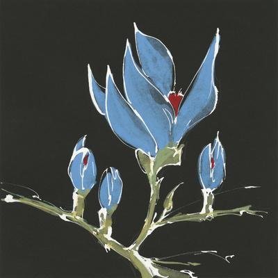https://imgc.artprintimages.com/img/print/magnolia-on-black-i_u-l-q1ayfcm0.jpg?p=0