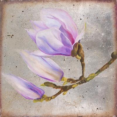 Magnolia on Silver Leaf I-Patricia Pinto-Art Print