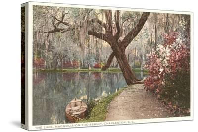 Magnolia on the Ashley, Charleston, South Carolina