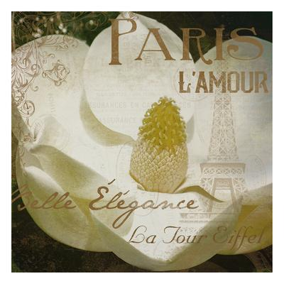 https://imgc.artprintimages.com/img/print/magnolia-paris-mate_u-l-f8rewf0.jpg?p=0