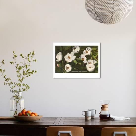 Magnolia State Flower Of Louisiana Art Print By Artcom