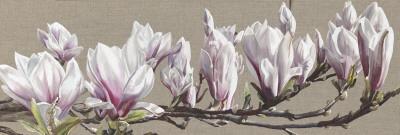 https://imgc.artprintimages.com/img/print/magnolia-swathe_u-l-f4t75b0.jpg?p=0