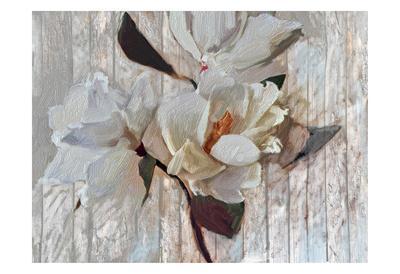 https://imgc.artprintimages.com/img/print/magnolia1_u-l-f90bkl0.jpg?p=0