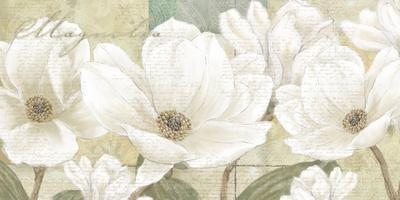 https://imgc.artprintimages.com/img/print/magnolia_u-l-f5ae3n0.jpg?p=0