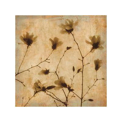 https://imgc.artprintimages.com/img/print/magnolias-ii_u-l-f7mdkb0.jpg?p=0