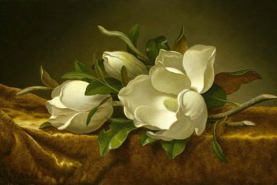 Magnolias on Gold Velvet Cloth, C. 1889-Martin Johnson Heade-Giclee Print