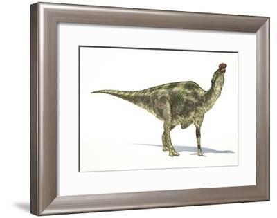 Maiasaura Dinosaur, Artwork--Framed Art Print