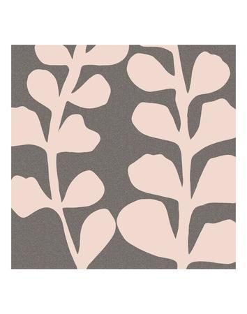 https://imgc.artprintimages.com/img/print/maidenhair-shell-pink_u-l-f8czy30.jpg?p=0