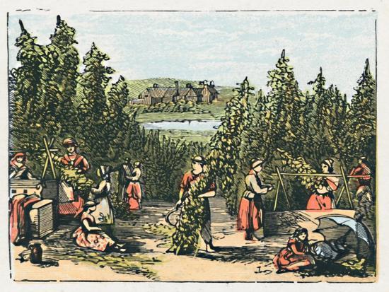 'Maidstone', c1910-Unknown-Giclee Print