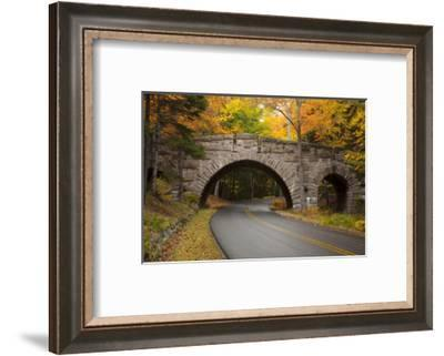 Maine, Acadia National Park, Carriage Road in Acadia National Park-Joanne Wells-Framed Photographic Print