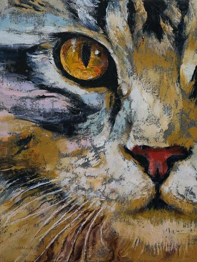 Maine Coon Cat-Michael Creese-Art Print