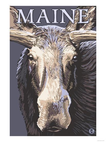 Maine - Moose Up Close-Lantern Press-Art Print