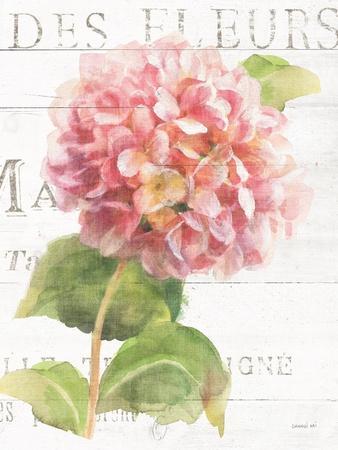 https://imgc.artprintimages.com/img/print/maison-des-fleurs-vii_u-l-q1dr99g0.jpg?p=0