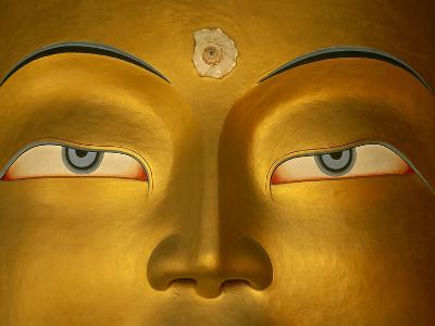 Maitreya, Close Up of Statue Head, Buddha, Tikse Monastery, Ladakh, India, Himalayas-Colin Monteath/Minden Pictures-Photographic Print