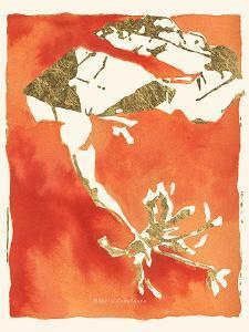 Alaria esculenta by Maja Gunnarsdottir
