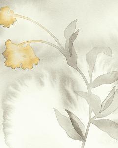 Delicada Glimmer - Harmony by Maja Gunnarsdottir