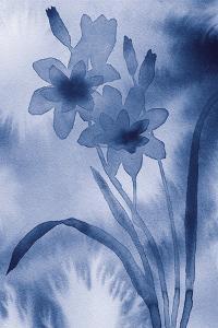 Sapphire - Flush by Maja Gunnarsdottir