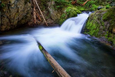Majestic Creek Water Flow, Mount Hood Wilderness-Vincent James-Photographic Print