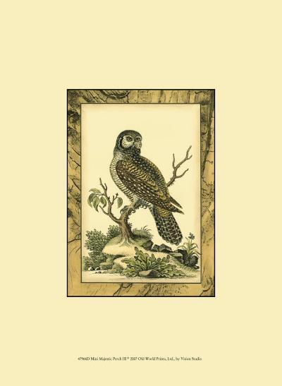 Majestic Perch III--Art Print