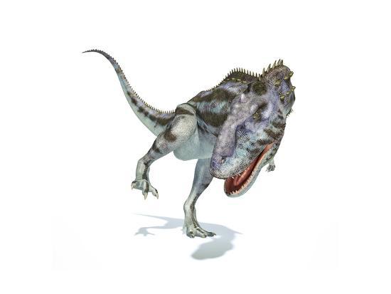 Majungasaurus Dinosaur, Artwork--Art Print