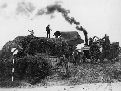 Making Hay--Photographic Print