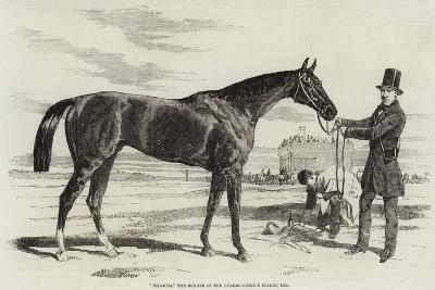 Malacca, the Winner of the Cambridgeshire Stakes, 1856--Giclee Print