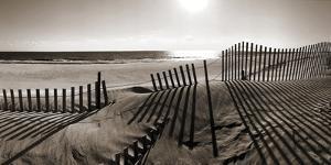 Beach Shadows by Malcolm Sanders
