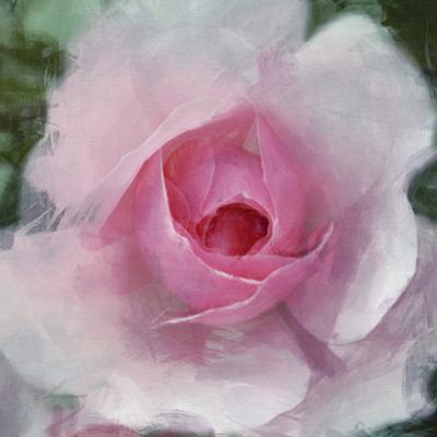 Elegant Bloom I