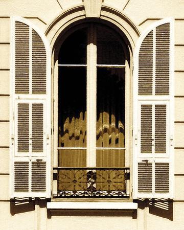 Elegant Window