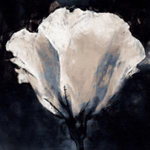 Lisianthus Sketch by Malcolm Sanders