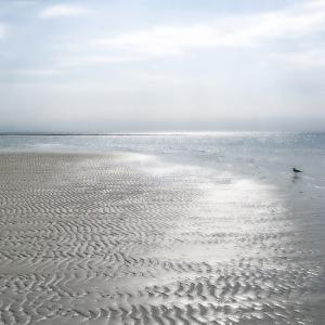 Seascape - Solo by Malcolm Sanders