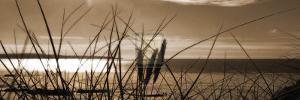 Setting Sun II by Malcolm Sanders