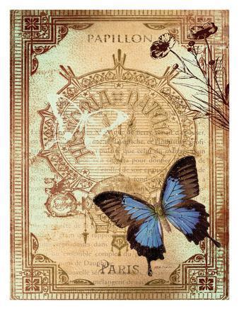 Paris Buterflies 1