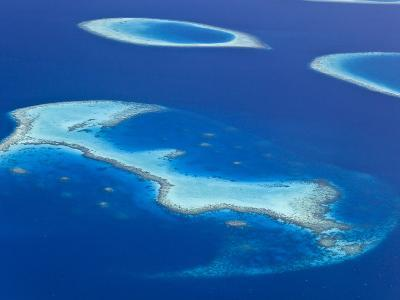 Maldives, Aerial View of Islands and Atolls-Michele Falzone-Photographic Print