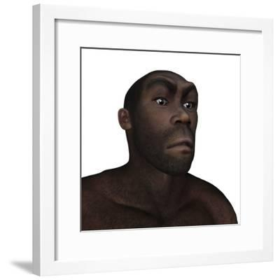 Male Homo Erectus Angry Portrait-Stocktrek Images-Framed Art Print