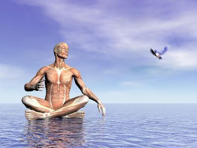 Male Musculature in Lotus Position While Looking at a Little Bird Flying--Art Print