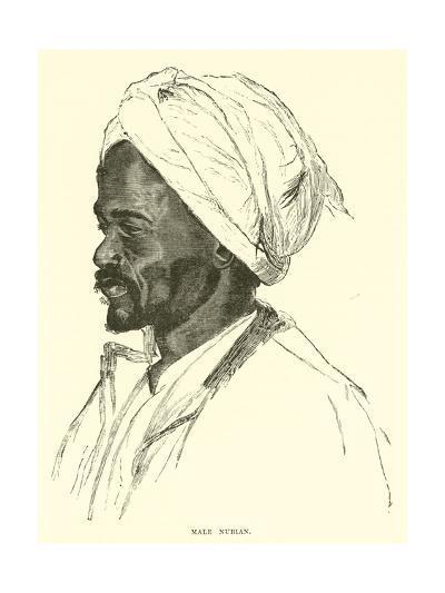 Male Nubian--Giclee Print