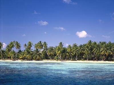Malediven, Meer, Palmenstrand, Indischer Ozean, Palmeninsel, Detail, Strand-Thonig-Photographic Print